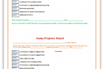 Progress-Report-Template